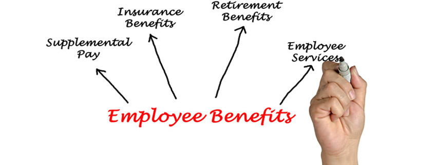 Employee Benefits listed on a white background include Supplemental Pay, Insurance Benefits, Employee Services and Retirement Benefits.
